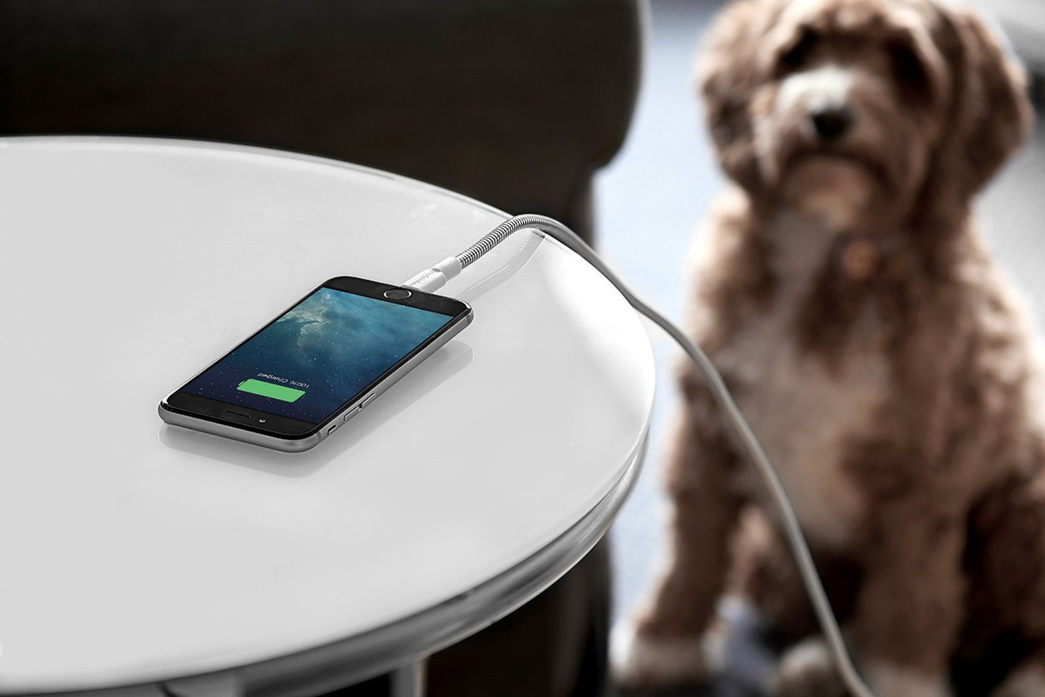 Best Lightning Cables for Your iPhone or iPad | Digital Trends