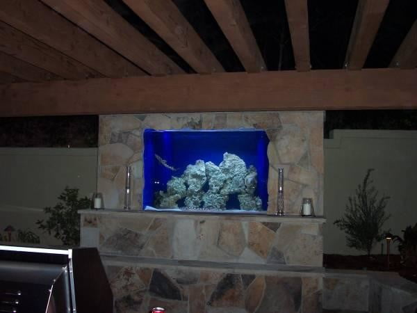 homes with their own shark tanks symphony pools tank 0471 copy