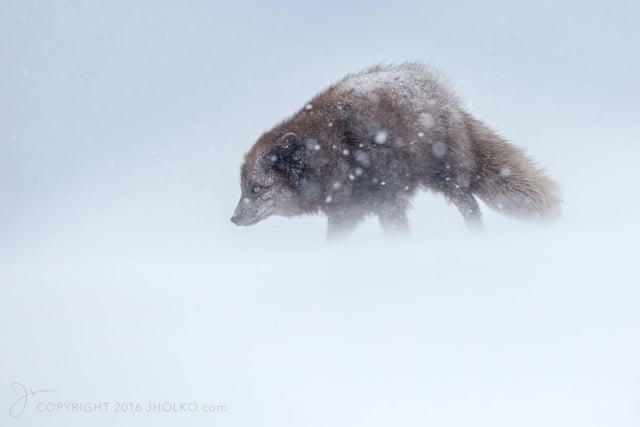 how to photograph the arctic with joshua holko interview hornvik 9830 edit
