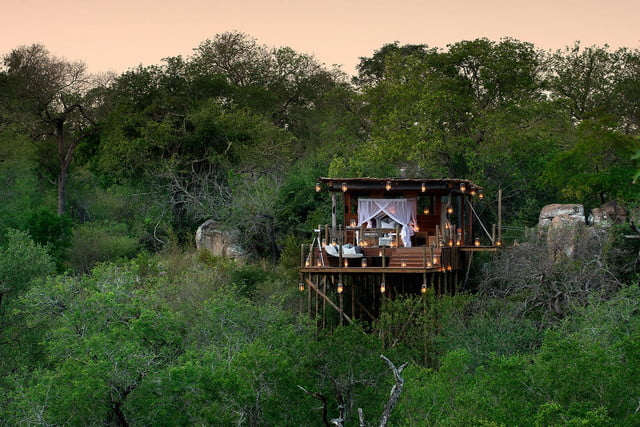 retreat from society and relax in these idyllic cabins around the world lion sands game reserve 8