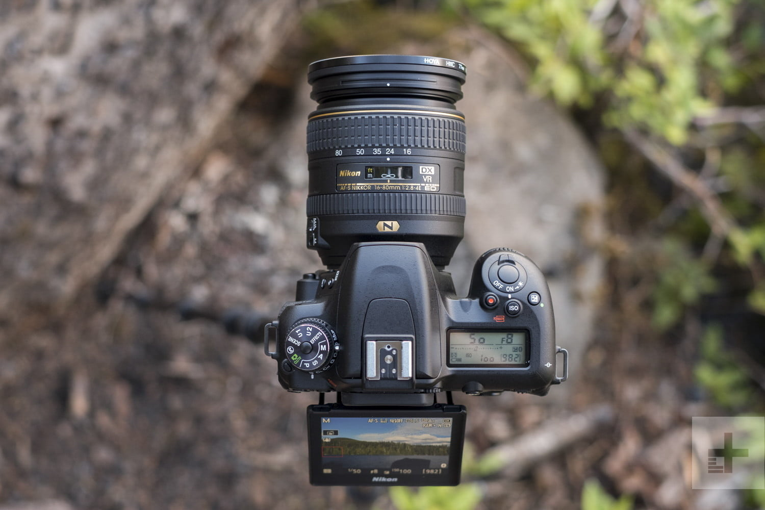 What is a good entry-level DSLR camera with a flip screen ...   Nikon Dslr Screen